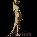 small AAN logo